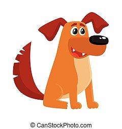chien brun, séance, maison, caractère, rigolote, chiot