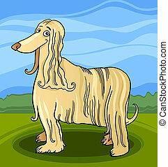 chien chasse afghan, dessin animé, chien