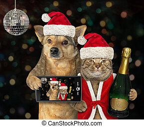 chien, chat, fête, année, nouveau, 2