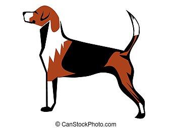 chien de chasse, renard