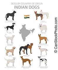 chien, fonctionnement, chasse, indien, jouet, ensemble, pays, breeds., chiens, herding, origin., bergers, service