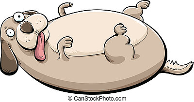chien, graisse