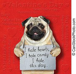 chien, haine, jour, valentines