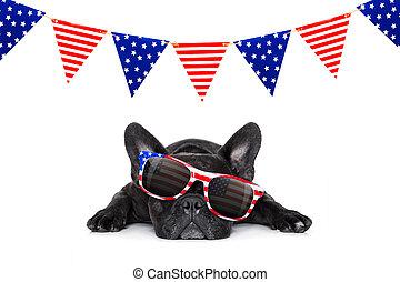 chien, indépendance, 4ème, jour, juillet