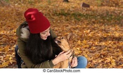 chien, jaune, feuillage, portrait, girl, agréable