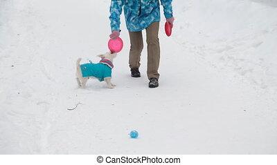 chien jouet, rapporter