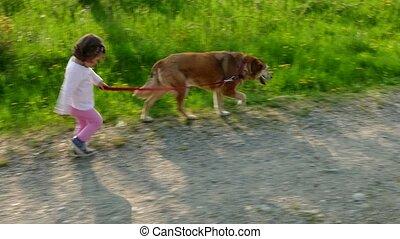 chien marche, amusement, girl, avoir, heureux