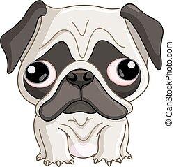chien pug
