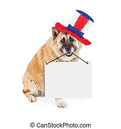 chien, signe, américain, porter, vide, patriotique