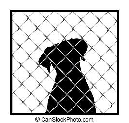 chien, silhouette, dans, cage