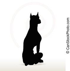 chien, silhouette, séance, pose