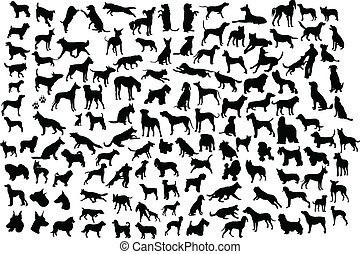 chien, silhouettes