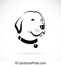 chien, tête, vecteur, labrador, image