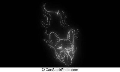 chien, taureau, numérique, néon, vidéo, flamme