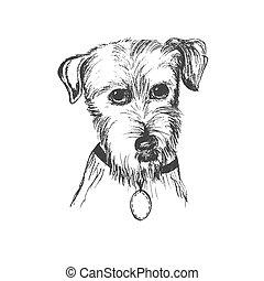 chien, vecteur, croquis, illustration, style