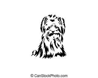 chien, vecteur, main, terrier, dessin, rigolote, race, séance, croquis, yorkshire