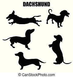 chien, vecteur, teckel, icônes