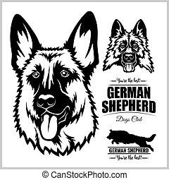 chien, -, vecteur, white., illustration, berger, portrait