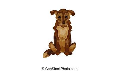 chien, vieux, icône, animation