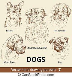 chiens, dessin, 7, remettre ensemble