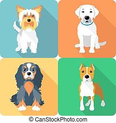 chiens, ensemble, icône, conception, plat