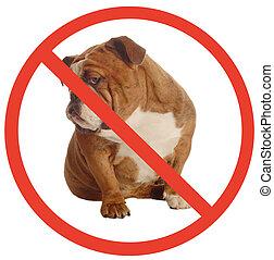 chiens, non, bouledogue, anglaise, chien, signe, permis,...