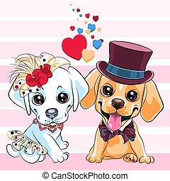 chiens, retriever, mignon, labrador, amants
