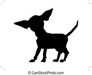 chihuahua - silhouette of chihuahua