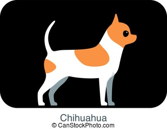 Chihuahua dog breed flat icon design