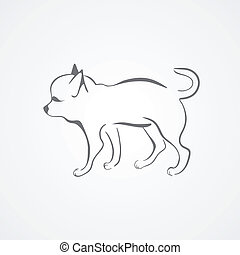 Chihuahua dog isolated on a white background