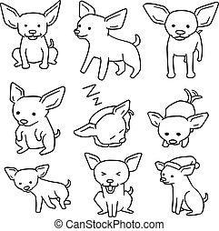 chihuahua, dog, vector, set