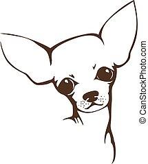 chihuahua, hund, -, vektor, abbildung