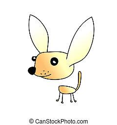 chihuahua, hund