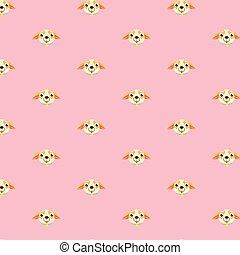 chihuahua pattern.