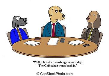 Chihuahua rumor - The dog board of directors hears rumor