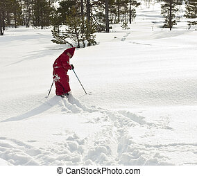 Child (4 years old) skiing in the forest, in fresh, new snow, looking back at the cmera.