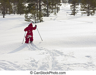 Child (4 years old) skiing in the forest, in fresh, new snow.