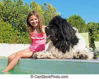child and newfoundland dog in swimming pool