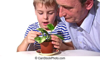 child and senior with plant