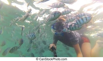Child bathe in the sea with fish. Scuba Diving in Masks