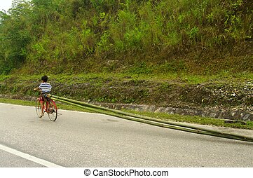 Child bike with bamboo