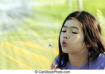 Child blowing dandelion - Little girl blowing on a dandelion