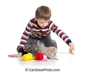 child boy playing with kittens isolated on white background