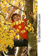Child climbing in the tree branches - A child climbs among ...