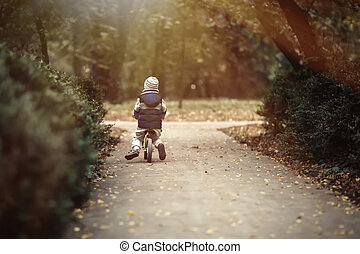 Child driving bicycle in park