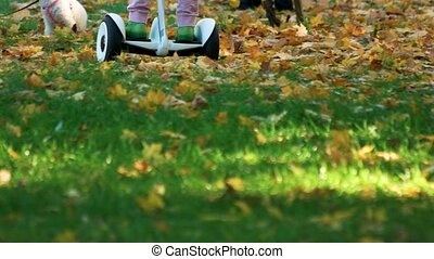 Child driving gyroscooter on the grass.