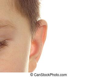 Child ear close-up
