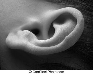 Child ear - Close-up of child ear in black and white