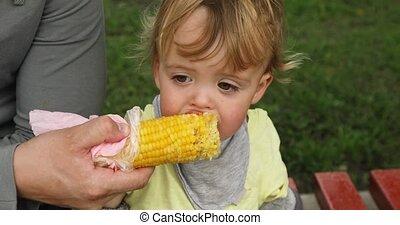 Child eat corn - Toddler boy eating corn on the street on a...