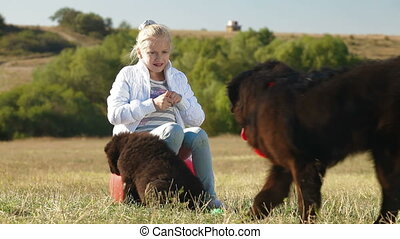 Child Feeding Newfoundland Dogs - Little Blond Girl Feeding...